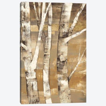 Wandering Through the Birches II Canvas Print #WAC38} by Albena Hristova Canvas Artwork