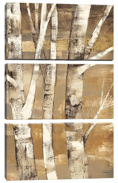 Wandering Through the Birches II Canvas Art Print