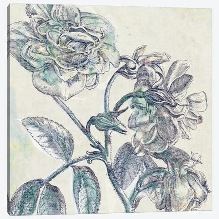 Belle Fleur I Canvas Print #WAC3947} by Sue Schlabach Canvas Wall Art