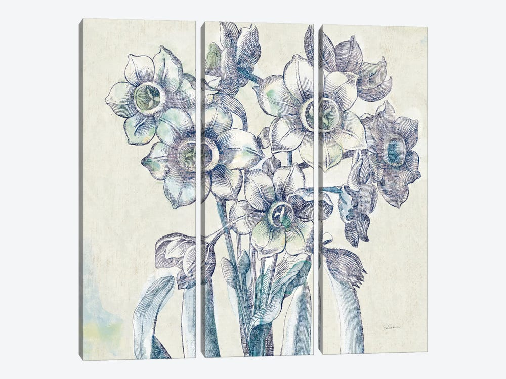 Belle Fleur IV by Sue Schlabach 3-piece Canvas Art Print
