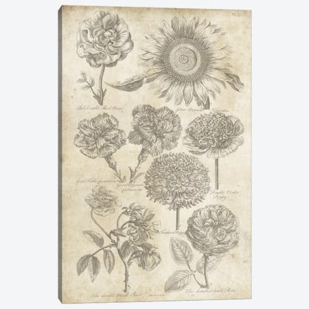 Eden Antique Bookplate II 3-Piece Canvas #WAC3973} by Wild Apple Portfolio Canvas Artwork