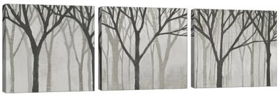 Spring Trees Greystone Triptych Canvas Art Print