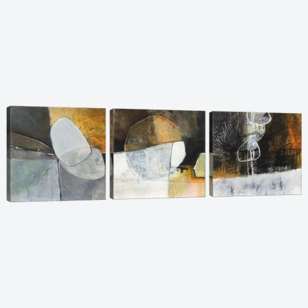 Abstract Pebble Triptych Canvas Print Set #WAC3HSET111} by Jane Davies Canvas Artwork