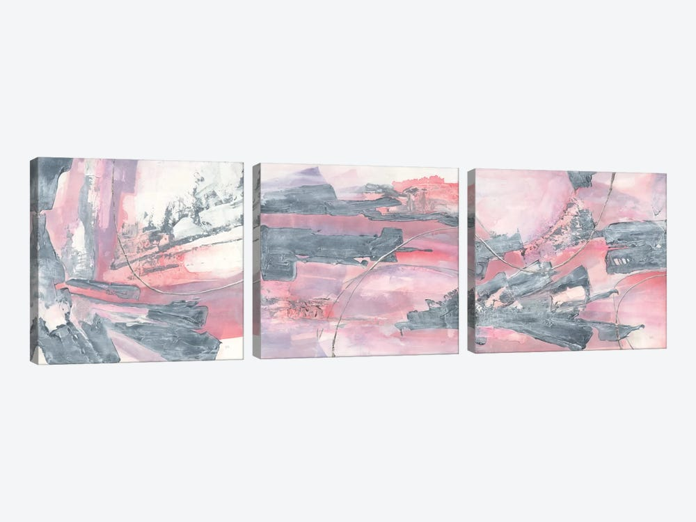Whitewashed Blush Triptych by Chris Paschke 3-piece Canvas Art