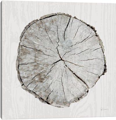Woodland Years I Canvas Art Print