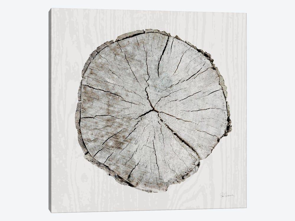 Woodland Years I by Sue Schlabach 1-piece Canvas Wall Art