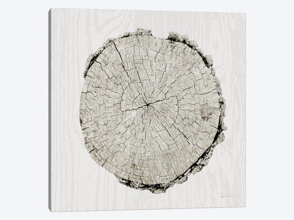 Woodland Years II by Sue Schlabach 1-piece Canvas Wall Art