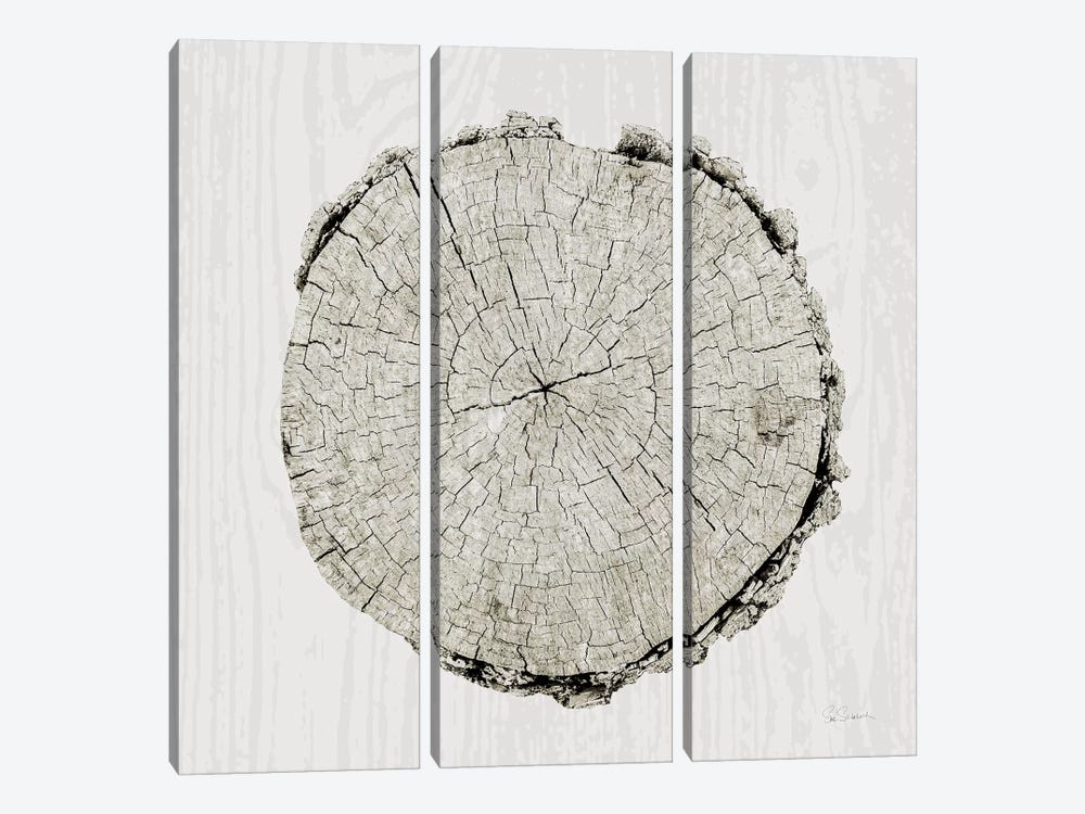 Woodland Years II by Sue Schlabach 3-piece Canvas Wall Art