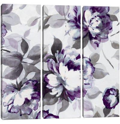 Scent Of Plum Roses II Canvas Art Print