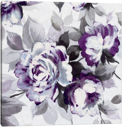 Scent Of Plum Roses III Canvas Art Print