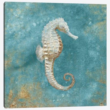 Treasures From The Sea I (Aquamarine) Canvas Print #WAC4028} by Danhui Nai Art Print