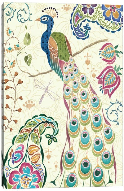 Peacock Fantasy III  by Daphne Brissonnet Canvas Art Print