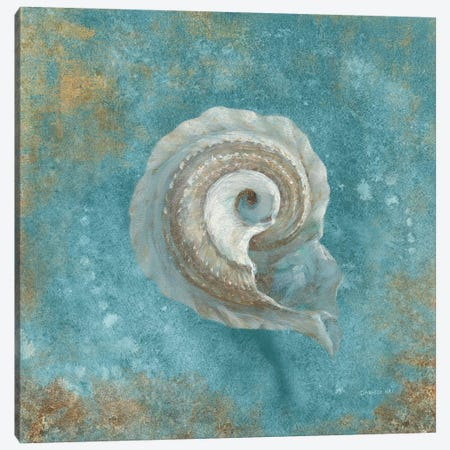 Treasures From The Sea III (Aquamarine) Canvas Print #WAC4030} by Danhui Nai Canvas Art