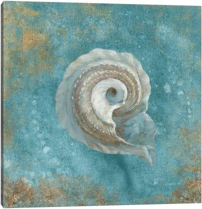 Treasures From The Sea III (Aquamarine) Canvas Art Print