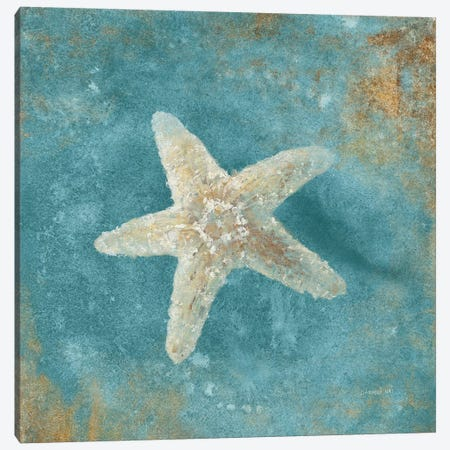Treasures From The Sea IV (Aquamarine) Canvas Print #WAC4031} by Danhui Nai Canvas Art