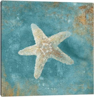 Treasures From The Sea IV (Aquamarine) Canvas Art Print
