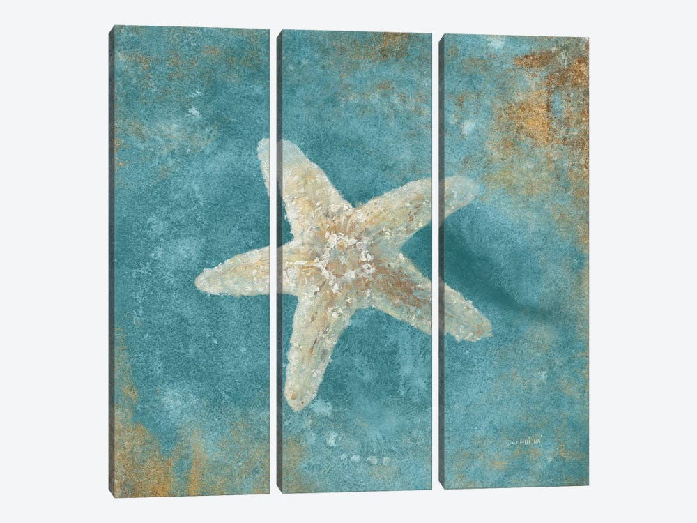Treasures From The Sea IV (Aquamarine) by Danhui Nai 3-piece Canvas Art