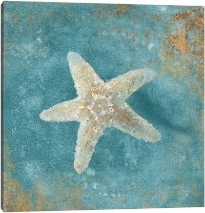 Treasures From The Sea IV (Aquamarine) Canvas Art Print