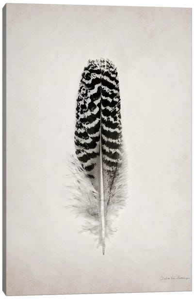 Feather I Canvas Print #WAC4032