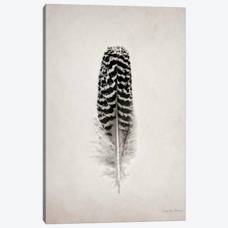 Feather I Canvas Print #WAC4032} by Debra Van Swearingen Canvas Wall Art