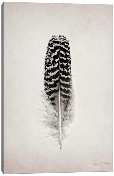 Feather I Canvas Art Print