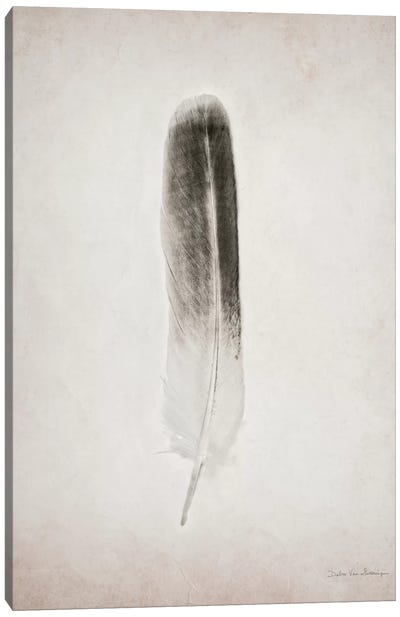Feather II Canvas Art Print