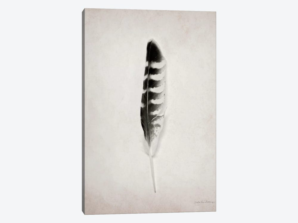 Feather IV 1-piece Canvas Artwork