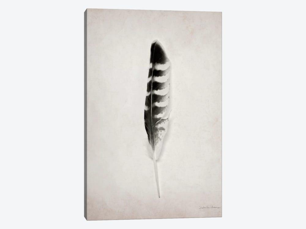 Feather IV by Debra Van Swearingen 1-piece Canvas Artwork