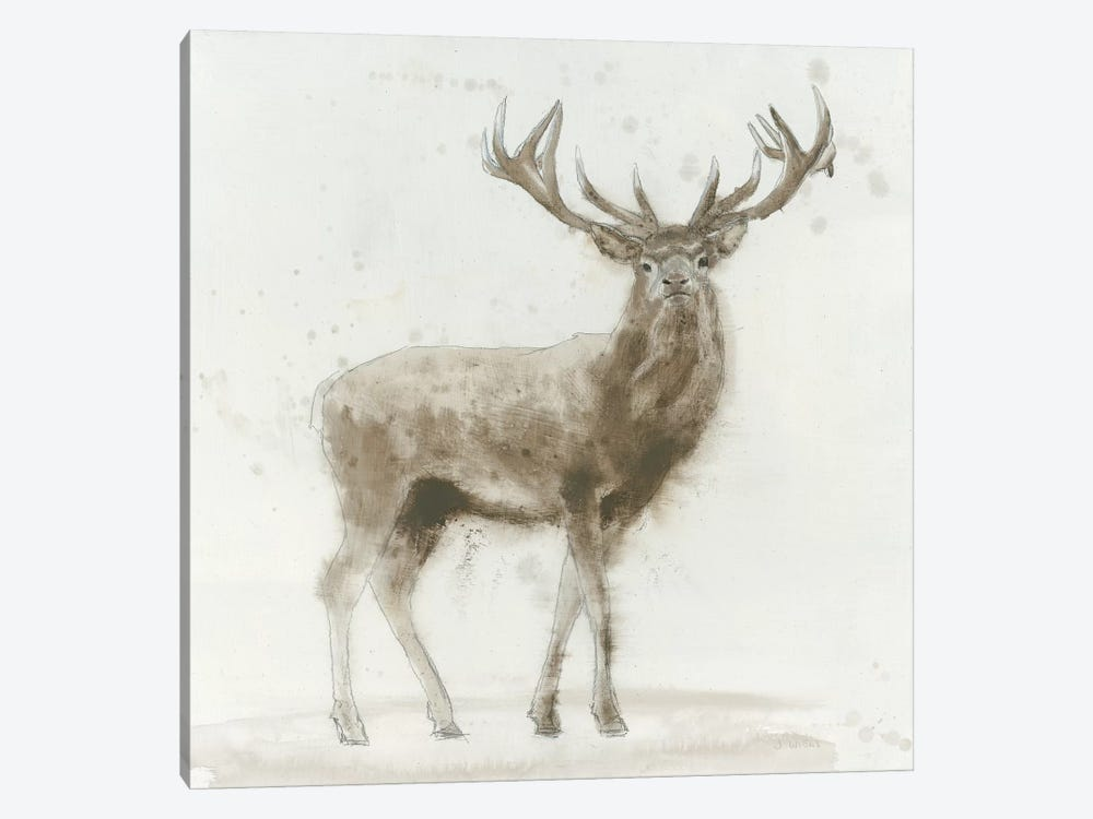 Stag V.2 by James Wiens 1-piece Canvas Print