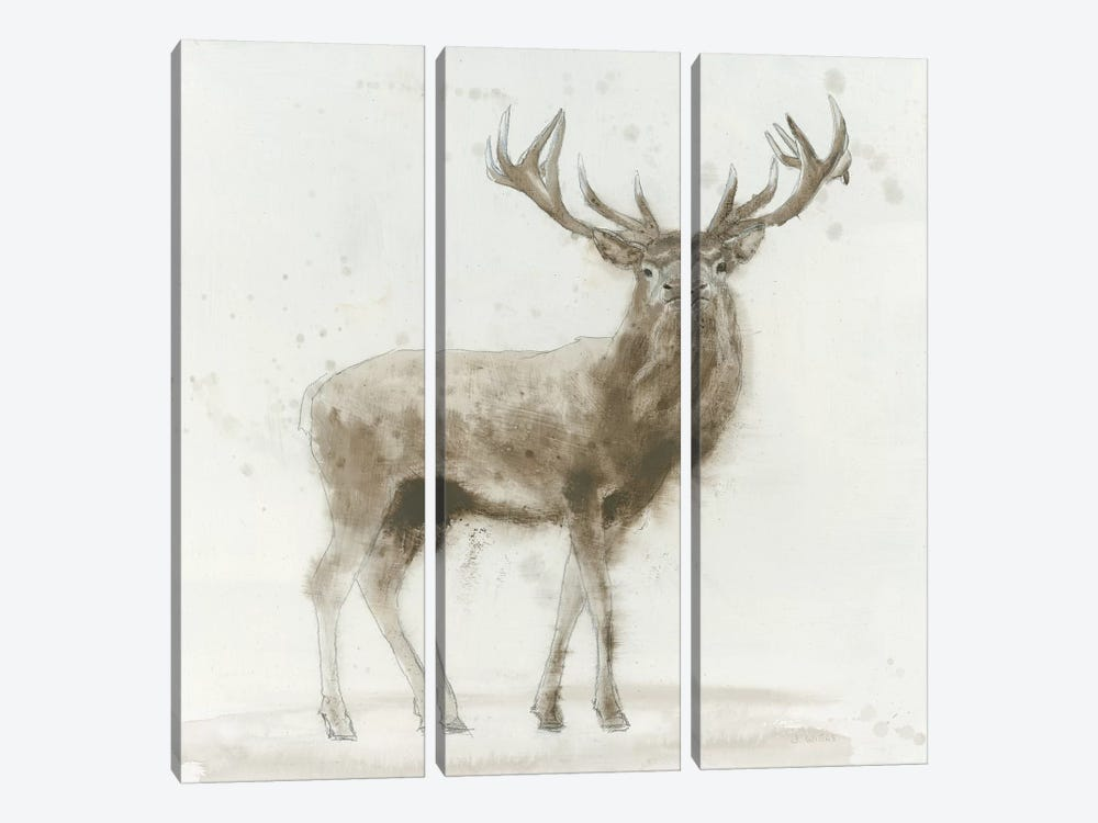 Stag V.2 by James Wiens 3-piece Canvas Print