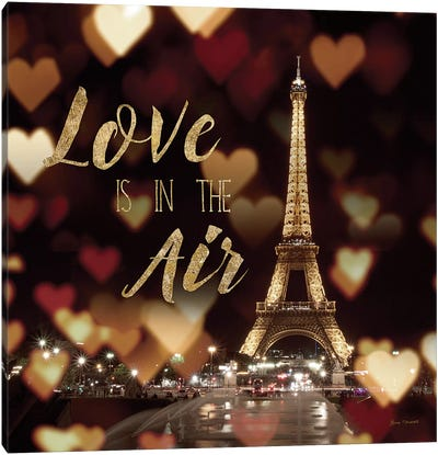 Love Is In The Air Canvas Art Print