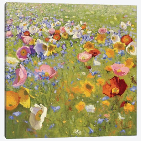 Champ De Fleur I Canvas Print #WAC4044} by Shirley Novak Canvas Wall Art