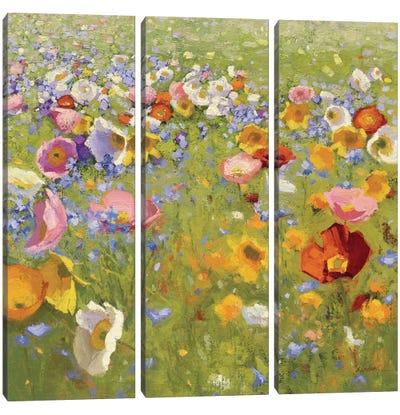 Champ De Fleur I Canvas Art Print