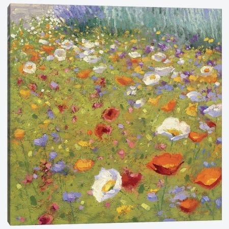 Champ De Fleur II Canvas Print #WAC4045} by Shirley Novak Canvas Wall Art