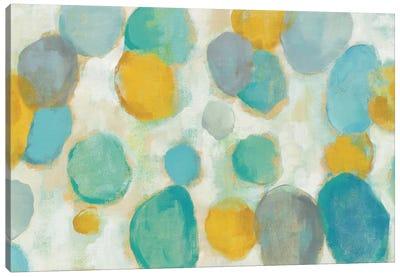Painted Pebbles Canvas Print #WAC4047