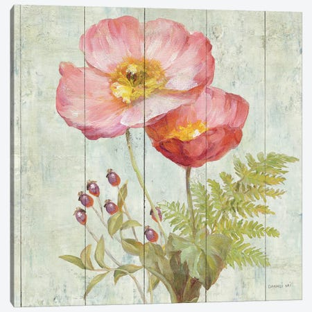 Natural Floral IV Canvas Print #WAC4054} by Danhui Nai Canvas Art Print