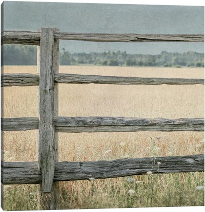 Neutral Country I Crop Canvas Art Print