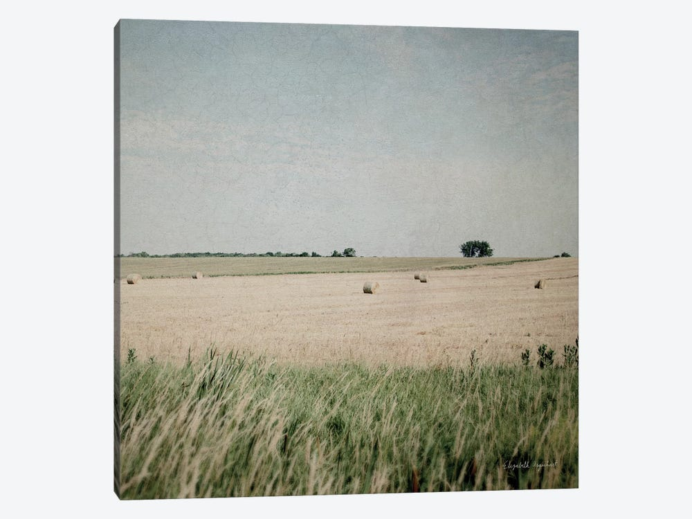 Neutral Country II Crop by Elizabeth Urquhart 1-piece Canvas Wall Art