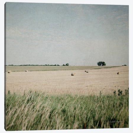 Neutral Country II Crop Canvas Print #WAC4057} by Elizabeth Urquhart Canvas Art Print