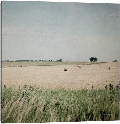 Neutral Country II Crop Canvas Art Print