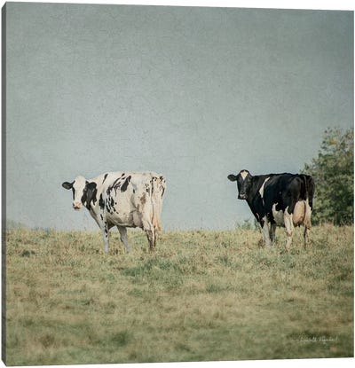 Neutral Country III Crop Canvas Art Print