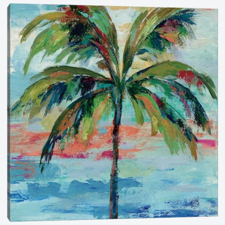 California Palm I Canvas Print #WAC4067} by Silvia Vassileva Canvas Wall Art