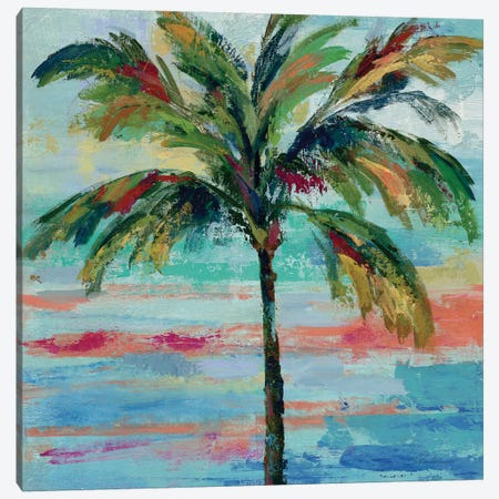 California Palm II Canvas Print #WAC4068} by Silvia Vassileva Canvas Print