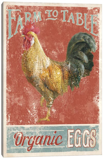 Farm Nostalgia V Canvas Art Print