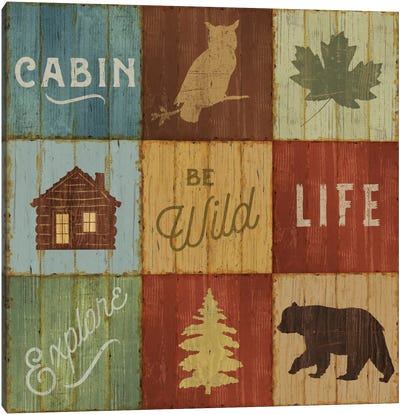 Lake Lodge VIII Canvas Art Print