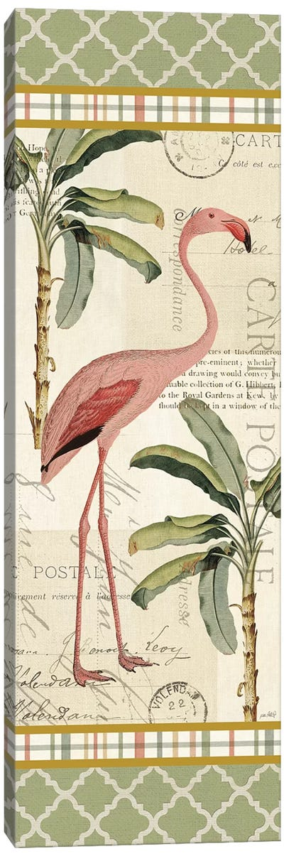 Floridian V Canvas Art Print