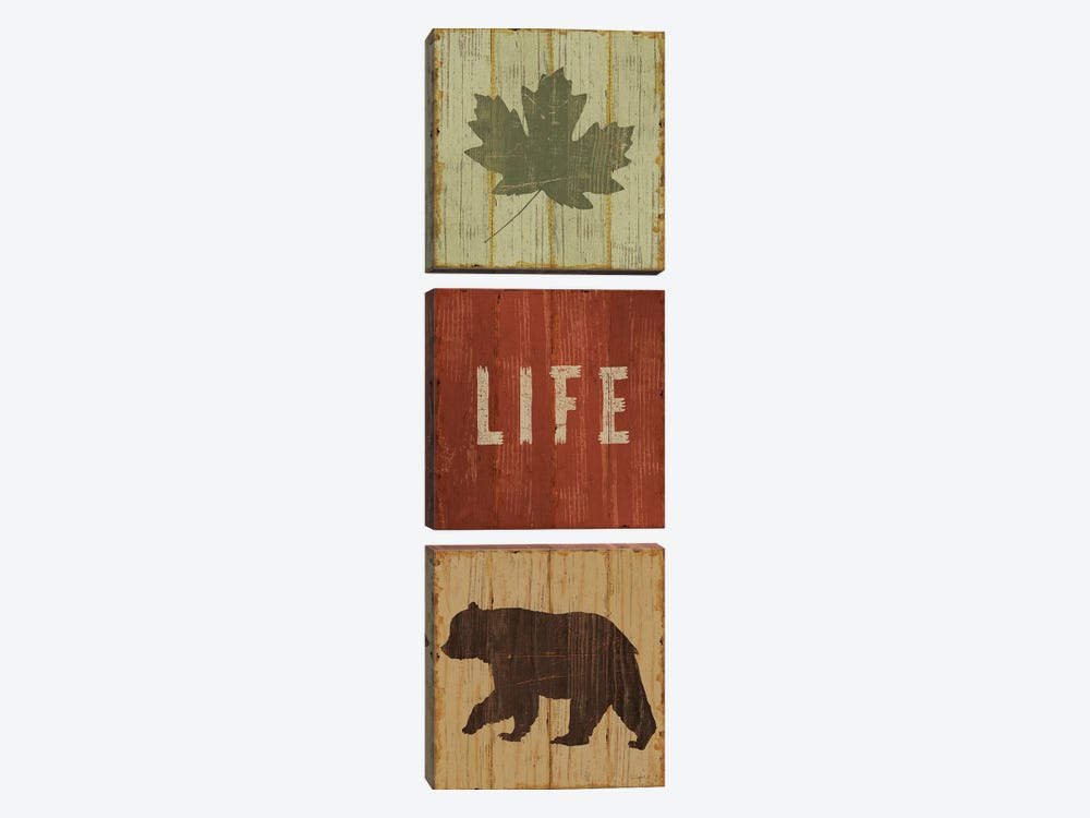 Lake Lodge XIII by Sue Schlabach 3-piece Canvas Artwork