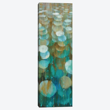 Raindrops III Canvas Print #WAC4212} by Danhui Nai Canvas Artwork