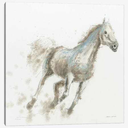 Stallion I Canvas Print #WAC4213} by James Wiens Canvas Art