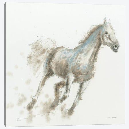 Stallion I Canvas Print #WAC4213} by James Wiens Canvas Art